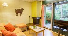 Comfort Apartment EP82 at Center Parcs Erperheide